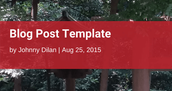 Divi Blog Post Template